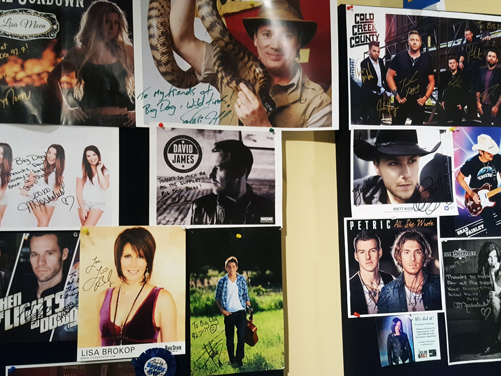 Popular country singer posters