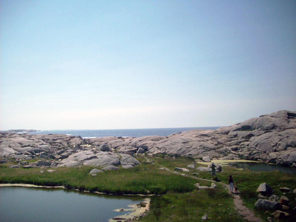 Village near Peggy's Cove