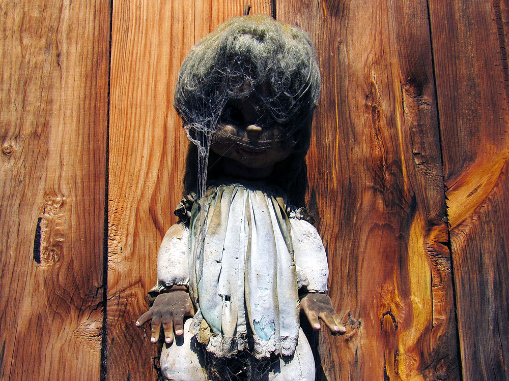 Doll on wood