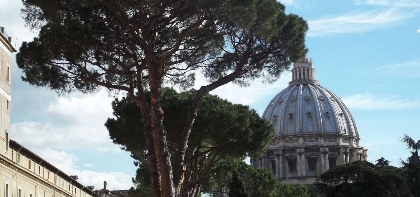 Vatican from Outside