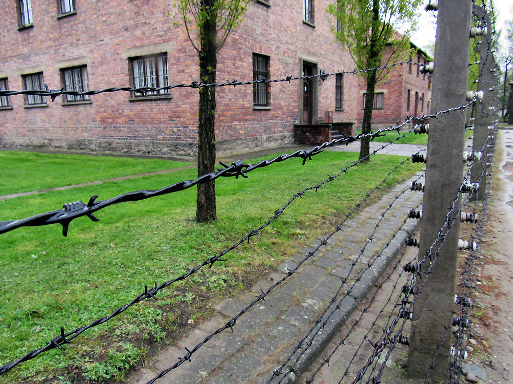 Fence in Auschwitz
