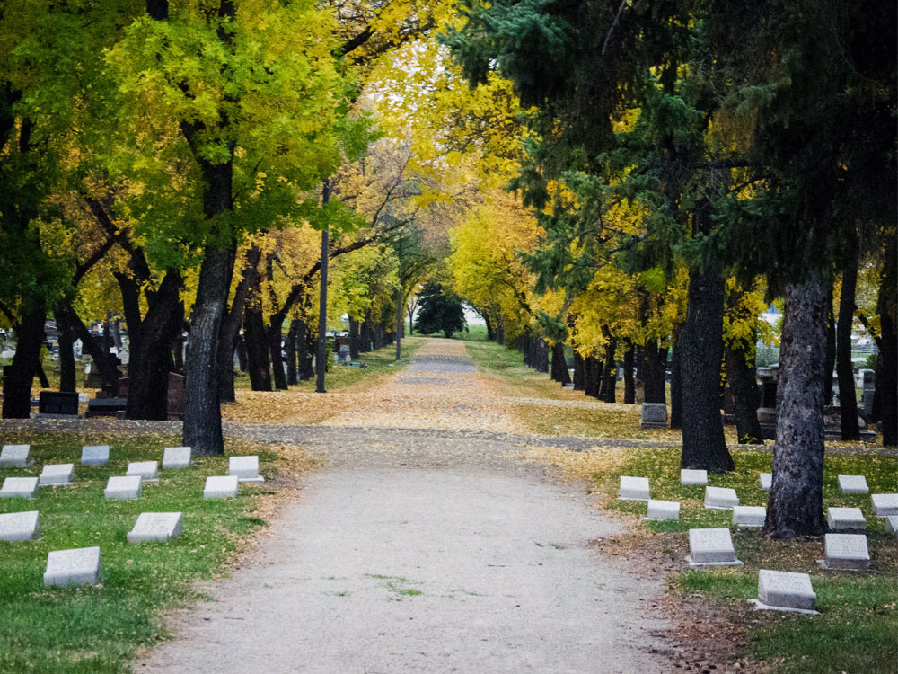 Cemetery Path by Patti