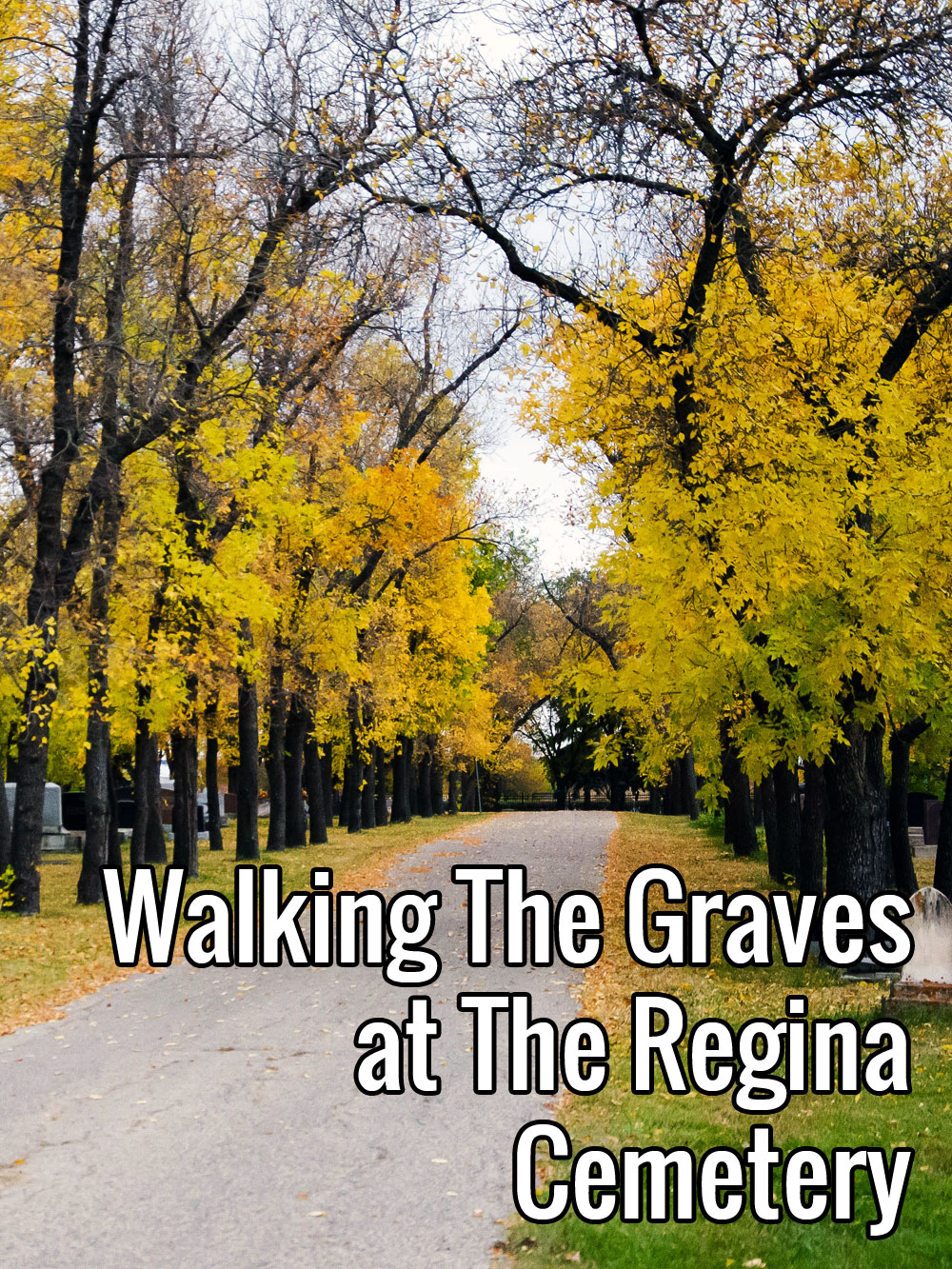 Walking The Graves at The Regina Cemetery