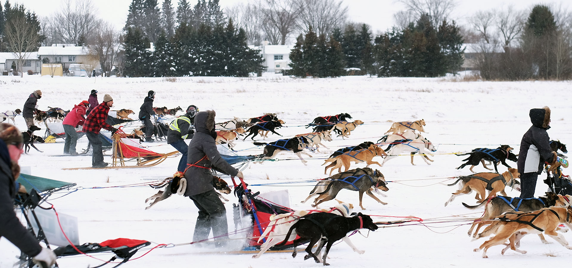 Musher's Rendezvous in Preeceville