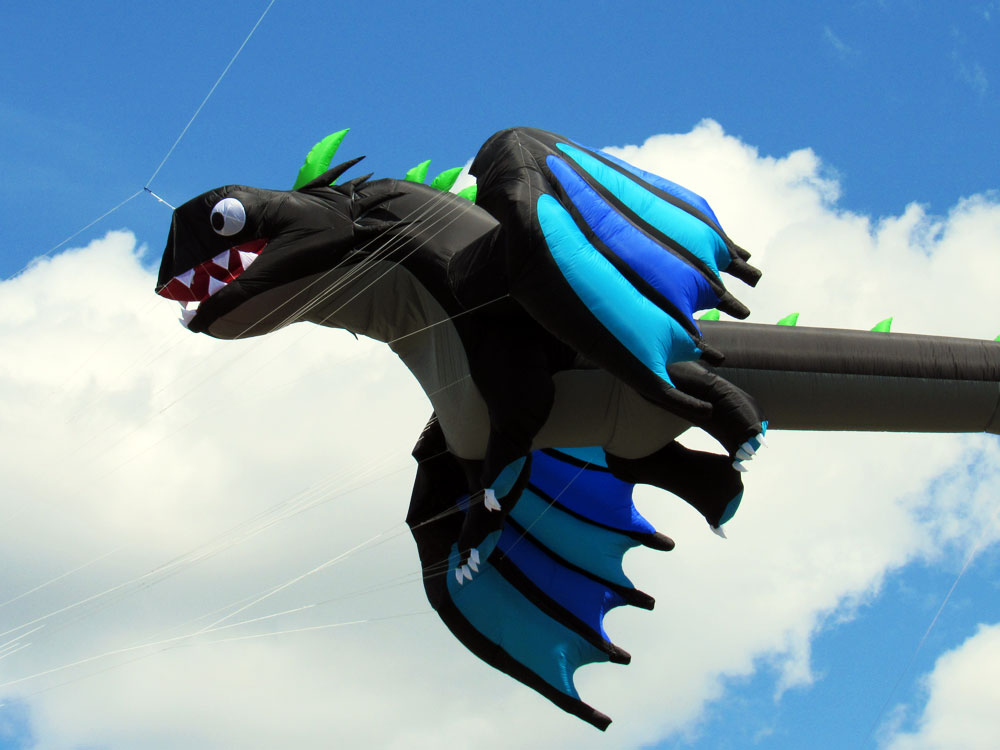Black Dragon kite