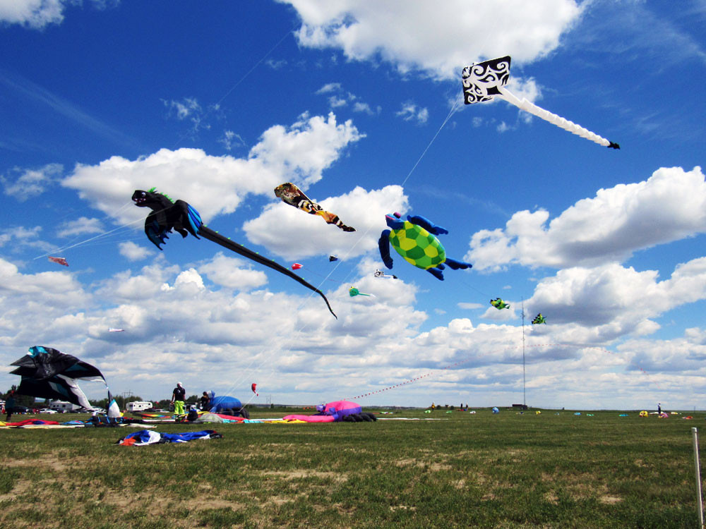 Some different kites at Windscape