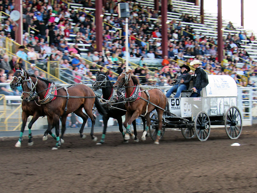 Chuck wagon barrel racing in 