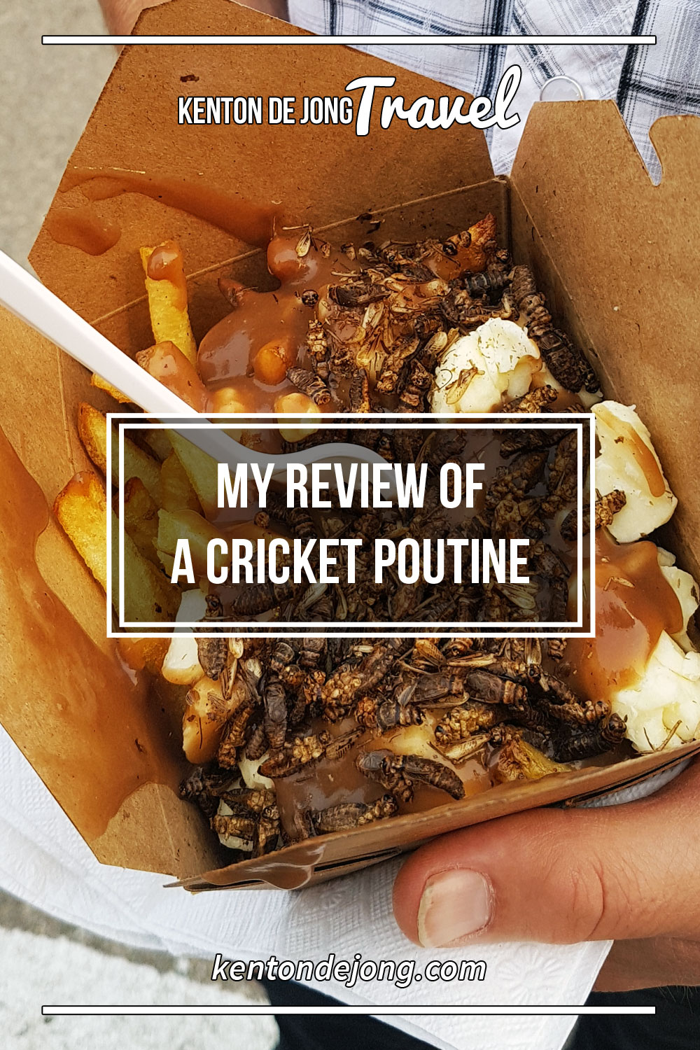 My Review of a Cricket Poutine
