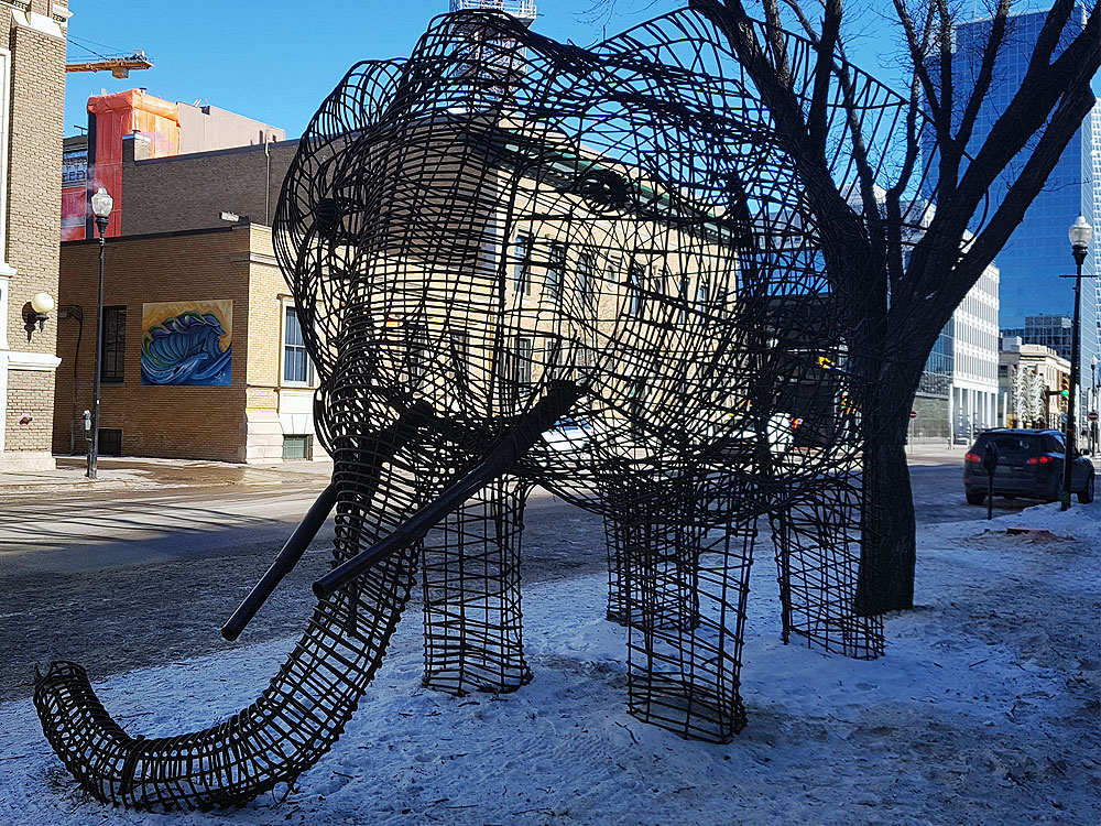 Downtown Regina Elephant
