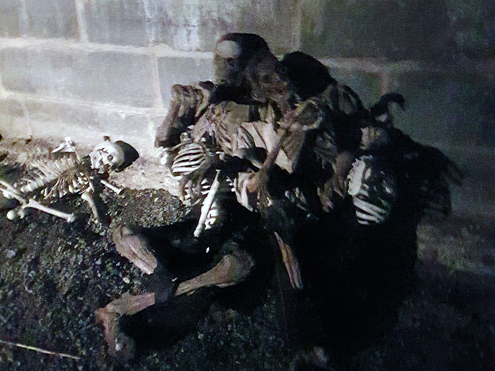 Skeletons at Fort Fright