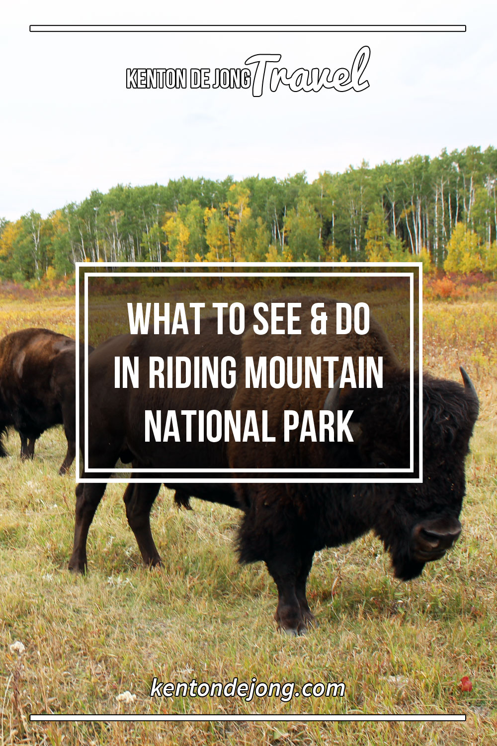What to See and Do in Riding Mountain National Park