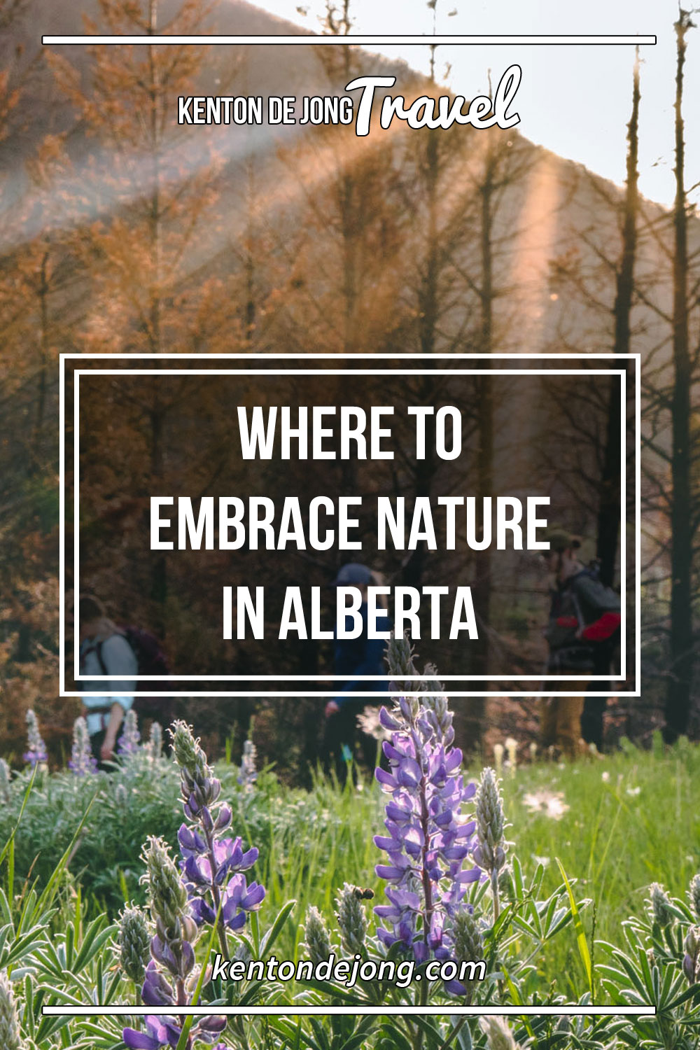 Where to Embrace Nature in Alberta