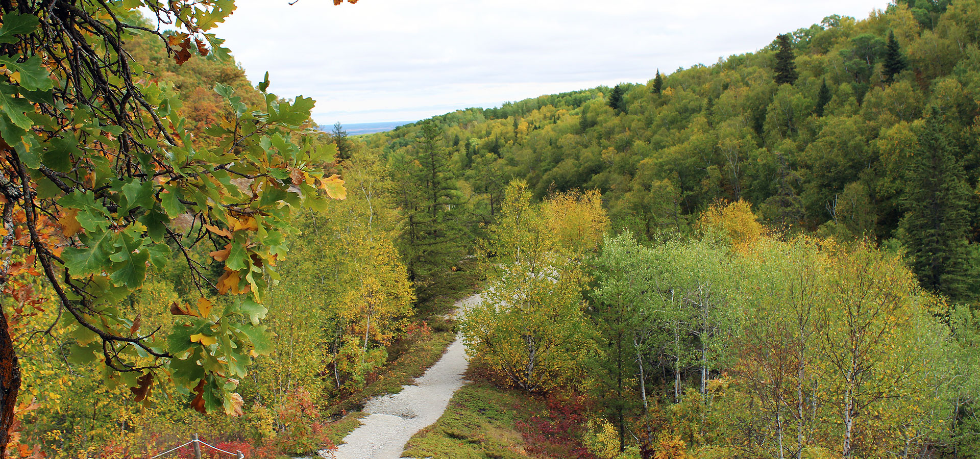 The Escarpment in Riding Mountain National Park
