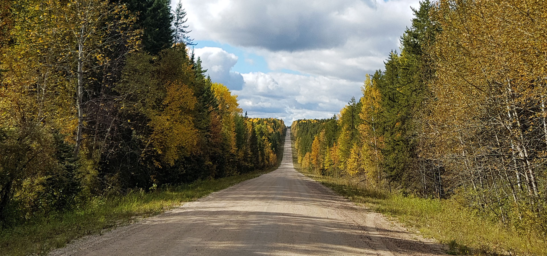 Road to Prince Albert National Park